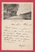 Lobbes - La Portelette  - 1901 ... Précurseur ( Voir Verso ) - Lobbes
