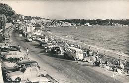 83   SANARY   -  LA PLAGE DU LIDO  ,(  Voitures Peugeot, Renault Fregate ) - Sanary-sur-Mer