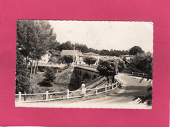 40 LANDES, SORE, Le Pont De La Leyre, Animée, 1951, (Delrorbe) - Sore