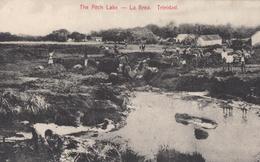 CPA - La Brea - The Pitch Lake - Trinidad