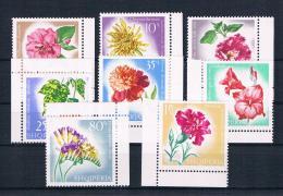 Albanien 1967 Blumen Mi.Nr. 1143/50 Kpl. Satz ** - Albanie