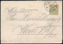 1906 5 Részes Budapest Panoráma Lap Nyomtatványként 5f... - Stamps