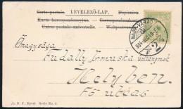 1904 Turul 5f Eltolódott 'LÁS(ZLÓ)' Céglyukasztással Képeslapon - Stamps