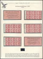 ** 1909 10f Bélyegfüzet Lapokra Szedve, Teljes, Kiállítási Lapon - Stamps