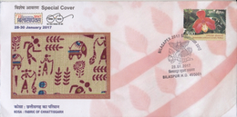 India  2017  Silk Worm  Kosa :  Textiles  Fabric Of Chhattisgarh  BILASPUR  Special Cover  # 76702  Inde Indien - Textile