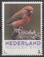 Nederland - September 2017 - Herfstvogels - Kruisbek- Vogels/birds/vögel/oiseaux - MNH - Niederlande