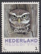 Nederland - September 2017 - Herfstvogels - Steenuil - Vogels/birds/vögel/oiseaux - MNH - Niederlande