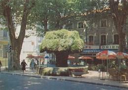 CAFE ORIENTAL/SALON DE PROVENCE (SA) - Cafés