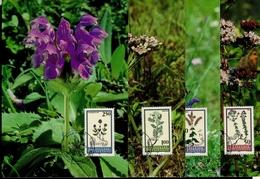 Liechtenstein MK/Nr. 119 Pflanzen 4 Maximumkarte - Maximum Cards