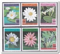 Afghanistan 1997, Postfris MNH, Flowers - Afghanistan