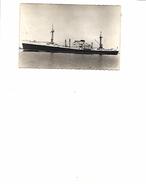 CP BATEAU CARGO DE LONG COURS CARAIBE CARBET CARIMARE COMPAGNIE GENERALE TRANSATLANTIQUE - Ships