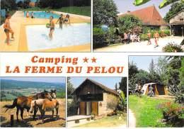 """24 - TURSAC Les Eyzies : Camping Caravaning """" LA FERME DU PELOU """" - CPSM GF -  Dordogne - France"""