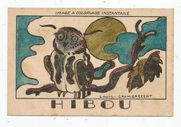 Chromo , Découpis , Image à Coloriage Instantané, Papier D'Arménie, HIBOU, Illustrateur : Louis Chambrecent - Chromos