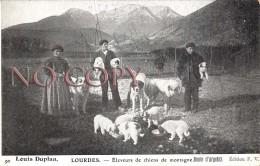 65 - Lourdes - Eleveurs De Chiens De Montagne - Métier - Lourdes