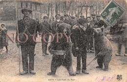 65 - Les Pyrénées - Les Ours Du Pays 1908 - Francia