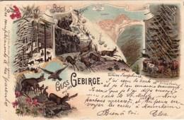 Deutschland -  Rinteln -  Gruss Aus  Dem GEBIRGE - 1897 - Rinteln