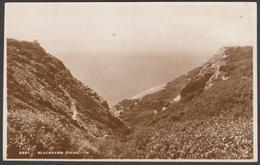 Blackgang Chine, Isle Of Wight, 1937 - Sweetman RP Postcard - England