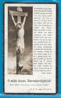 Bidprentje Van Petrus Franciscus Willems - Geel - Ten-Aert - 1875 - 1930 - Images Religieuses