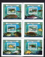 Guinea 2009 Fishes Imperf. DeLuxe (Glossy Cardboard) MNH - Marine Life