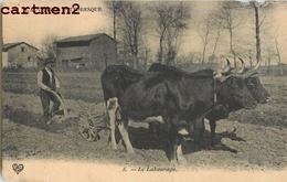 AUVERGNE PITTORESQUE LABOURAGE ATTELAGE BOEUFS AGRICULTURE 63 - Francia
