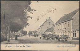 Olsene, Prachtzicht Op De Dorpplaats (1 - Belgium