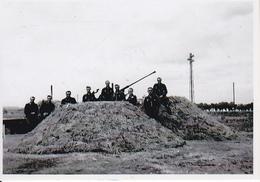 Foto Deutsche Soldaten Mit Flak In Stellung - 2. WK - 9*6cm - Repro (29207) - Repro's