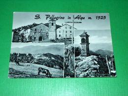 Cartolina San Pellegrino In Alpe - Vedute Diverse 1959 - Lucca