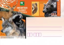 POLAND - Postcard - 2014.02.10. Cp 1659 Animals In Polish Zoo - Brown Bear, Wolf, Raccoon, Red Deer - Enteros Postales