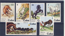 CUBA 1981 CHEVAUX  YVERT N°2289/94 NEUF MNH** - Chevaux