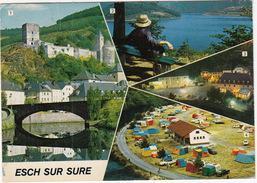 Esch-sur-Sure: CITROËN DS & 2CV, VOLVO PV 544, BORGWARD, TENTES, CARAVAN - Camping Officiel, Pont De Vue - (Luxembourg) - Esch-Sauer