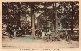 V10287 Cpa Belgique - Flobecq Houppe - Châlet Des Bois - Ath