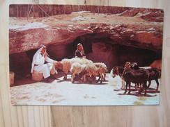 Field Of The Shepherds Near Bethlehem - Jordanie