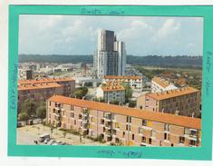 VIGNEUX SUR SEINE PATTE D'OIE CROIX BLANCHE - Vigneux Sur Seine