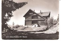 Plancios-Brixen-Bressanone(Italie-Trentino-Alto-Adige-Bolzano)-1962-Colonia Pontificia - Bolzano (Bozen)