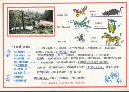 19 // PRADINES    Carte à Choix, - Autres Communes