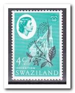 Swaziland 1962, Postfris MNH, Plant - Swaziland (1968-...)