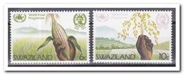 Swaziland 1983, Postfris MNH, Plants, Food - Swaziland (1968-...)