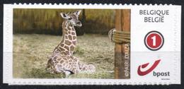 Belgium 2017 Duostamp Self-Adhesive MNH, Pairi Daiza Zoo, Giraffe, Girafe, Giraf - Giraffe