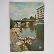 Brive - Le Pont Cardinal Sur La Corrèze - Lavandières - Brive La Gaillarde