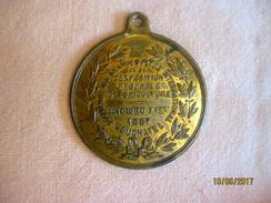 Suisse: Médaille Exposition Fédérale D'agriculture Neuchâtel 1887 - Professionnels / De Société