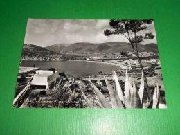 Cartolina Elba - Isola Meravigliosa - Lacona 1950 Ca - Livorno