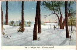 LATVIA.LETTLAND. Vidzeme Ziema. Photo Postcard - Letonia