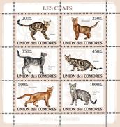 COMORES 2009 SHEET CATS LES CHATS GATTI GATOS KATZEN Cm9105a - Comoren (1975-...)