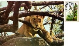 KENYA  KENIA  Lion Nice Stamp - Kenia