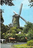 ** Lot De 4 Cartes ** MOULIN A VENT - CPSM CPM GF -  Windmill Windmühle Windmollen Molen Mulino A Vento Molino De Viento - Mulini A Vento