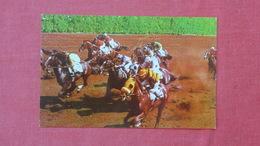 Horse Racing Back Stretch Hialeah Race Course Florida       Ref-2604 - Cartes Postales