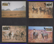 Namibia, 1991, Mountain Zebra, Set Of 4,  FIRST DAY MAXIM CARDS Special Cancel - Namibia (1990- ...)