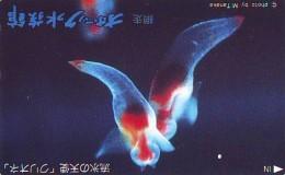 Télécarte  Japon * Poisson (306) Calamar * Japan Fish Phonecard CALMAR Squid KALMAR Inktvis - Vissen