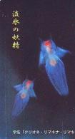 Télécarte  Japon * Poisson (307) Calamar * Japan Fish Phonecard CALMAR Squid KALMAR Inktvis - Fish