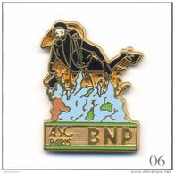 Pin´s Banque / Assurance - Banque BNP / ASC Paris - Section Plongée. Estampillé Ballard. Zamac. T457-06 - Banques